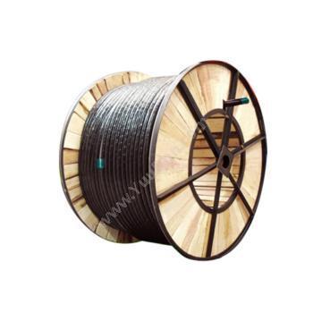 爱谱华顿 AiPu YJV22 4*6+1*4 4+1多芯铠装电力电缆 (黑) 定制 多芯电力电缆